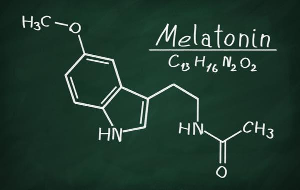 青汁メラトニン1