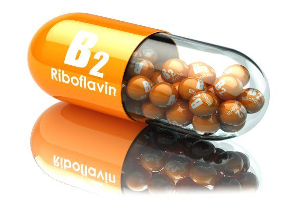 青汁ビタミンB2効果1