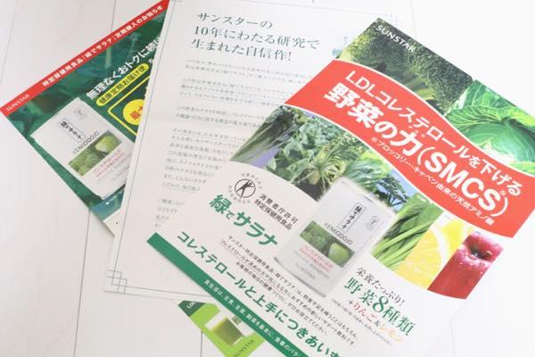 緑でサラナの口コミ体験レビュー2