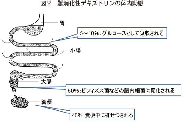 青汁・難消化デキストリンの効果2